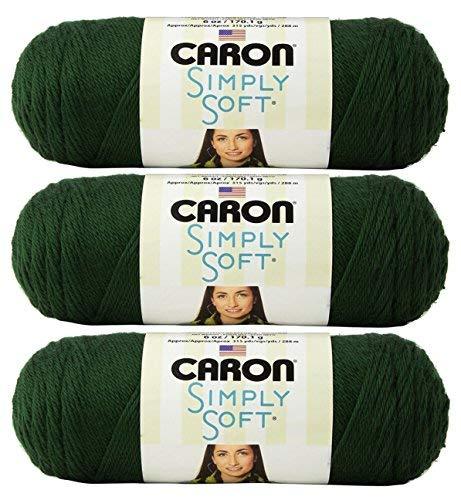 Caron Bulk Buy Simply Soft Yarn Solids (3-Pack) Dark Sage H97003-9707