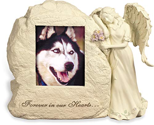 AngelStar 11-Inch by 9-Inch by 4-1 2-Inch Pet Urn with Frame, Forever in Our Hearts