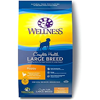 Amazon Com Wellness Complete Health Natural Dry Puppy