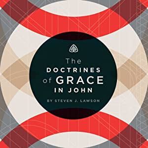 The Doctrines of Grace in John Speech