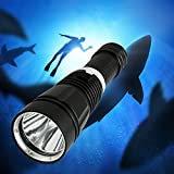 BlueFire Powerful Underwater Torch Cree XM-L2 LED Led Scuba Diving Flashlight Underwater 100 Meter Support 26650, 18650 and AAA battery Deep Light Cup