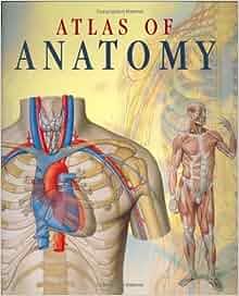 Atlas book anatomy pdf
