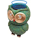CHANNA Owl Case Echo Dot Coin Bank-Owl Statue Crafted Mound Holder fit Echo Dot 2nd 1st Generation Echo Dot Kids Edition Speaker(Green)-Echo dot Stand Personalized Piggy Bank