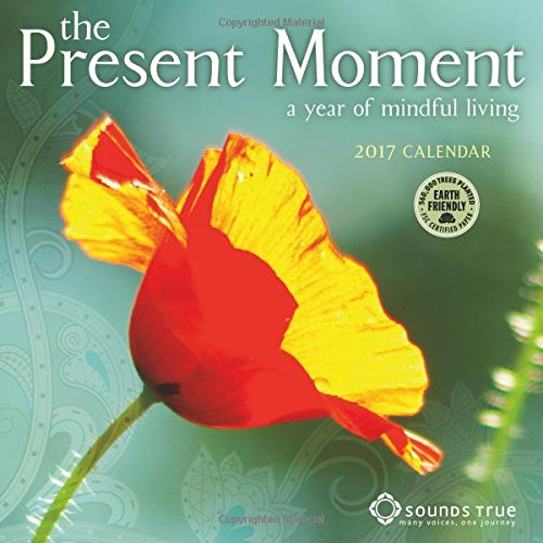 The Present Moment 2017 Mini Wall Calendar: A Year of Mindful Living