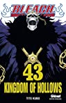 Bleach, Tome 43 : Kingdom of Hollows par Kubo