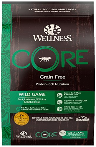 Wellness CORE Natural Grain Free Dry Dog Food, Wild Game Duck, Turkey, Boar & Rabbit, 12-Pound Bag