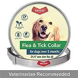 Best Dog Flea Collars - Sentas Dog Flea and Tick Collar - Flea Review