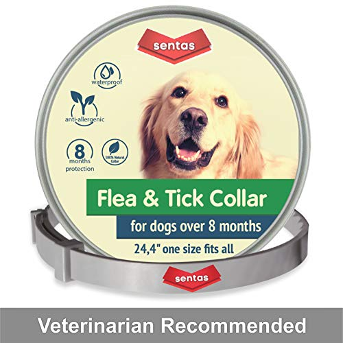 Sentas Dog Flea and Tick Collar - Flea and Tick Prevention for Dogs Up to 1 Year Easily Adjustable and Waterproof for Large Small Dogs Flea and Tick Control - Natural Dog Flea Collar for Pet 24.5