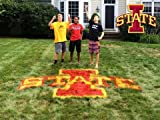 IOWA STATE LAWN STENCIL KIT - PAINT ISU ON YOUR YARD - LAWN -TAILGATE - FOR THE BIGGEST FAN - REUSABLE STENCIL AND PAINT