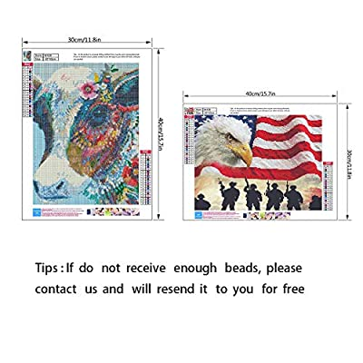 5D Diamond Painting Kits for Adults Kids Full Round Drill Diamond for Home Wall Decor American Flag Eagle and Colorful Cow in 2 Pack by YIGANERJING: Arts, Crafts & Sewing