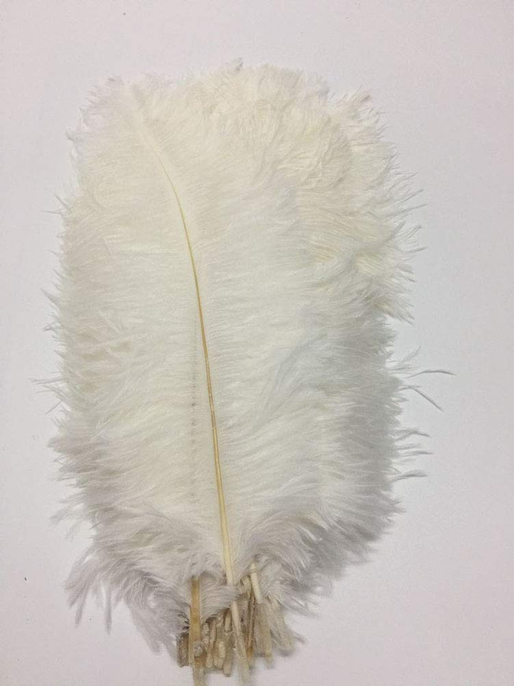CENFRY 100pcs Ostrich Feathers 12-14inch Plumes for Wedding Centerpieces Home Decoration (White)