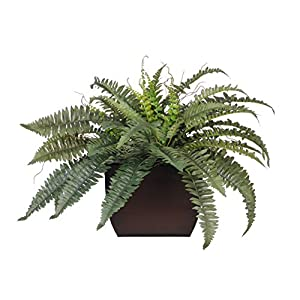 House of Silk Flowers Artificial Fern in Large Gloss Brown Zinc 29