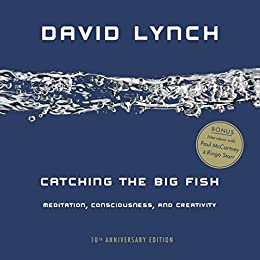 Catching the Big Fish: Meditation, Consciousness, and Creativity: 10th Anniversary Edition by [Lynch, David]