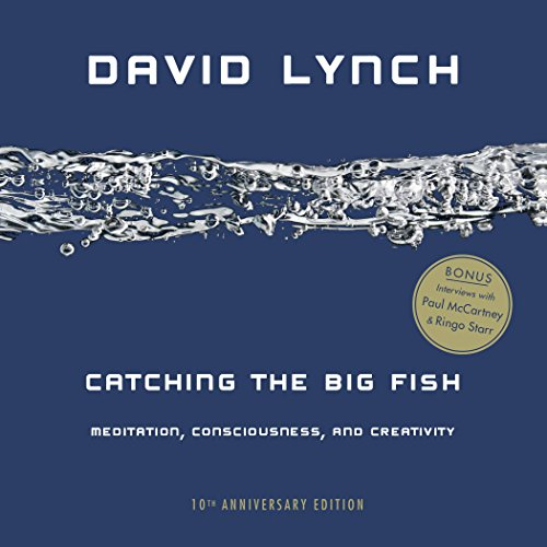 Pdf Spirituality Catching the Big Fish: Meditation, Consciousness, and Creativity: 10th Anniversary Edition