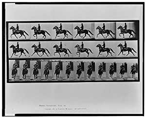 Photo: Animal locomotion-Eadweard Muybridge-Horseback Riding