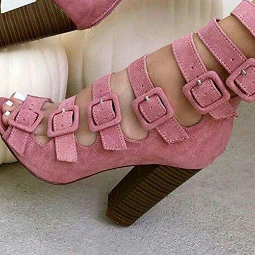 ZHZNVX Sandalias de Cabeza Hueca para Mujeres con Hebilla de Cinturón Sandalias de Tacón Grueso Sandalias con Cremallera de Tacón Alto, Rosa, 39