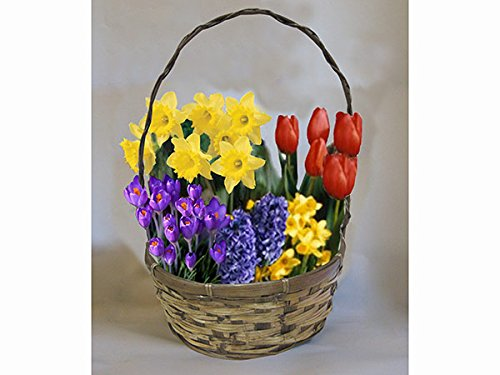 Yellow Flower Gift Basket - 8
