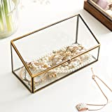 MyGift Decorative Clear Glass & Brass Tone Metal