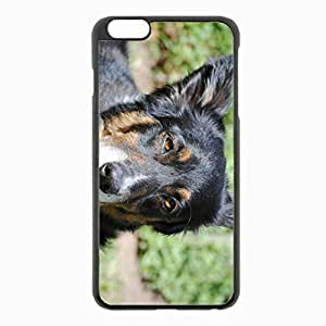 iPhone 6 Plus Black Hardshell Case 5.5inch - australian shepherd muzzle spotted dog Desin Images Protector Back Cover