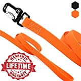 COLLAR Heavy Duty Dog Leash for Medium Large Dogs - Leash EVOLUTOR for Dogs up to 220 lbs (9.84 FT, Orange)