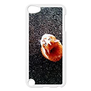 iPod 5 White Cell Phone Case Ginger Cat STY789856 Phone Case Active