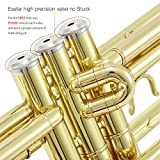 Eastar Gold Trumpet Brass Standard Bb Trumpet Set
