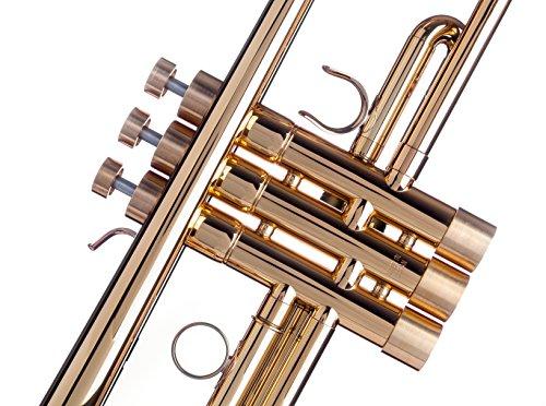 gold trim kit trumpet - 8