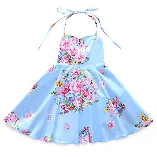 Flofallzique Floral Girls Dress Vintage Summer Flower Baby Girls Clothes Holiday Party Toddler Dress (3, Blue)