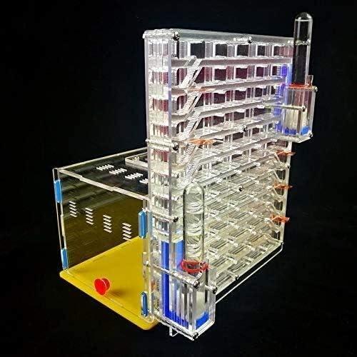 Lernspielzeug Ameisennestkäfige Große Größe Ameisenfarm Für Kinder Ameisennester Villa Ameisenwerkstatt Heimtiergebrauch 2-Tower Diy Installation (Color : Transparent)