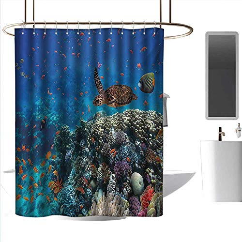homehot Shower Curtains Rings for Bathroom Fish,Exotic Fish and Turtle in Fresh Water on Stony Corals Bio Diversity Wild Life Photo,Multicolor,W108 x L72,Shower Curtain for Men]()
