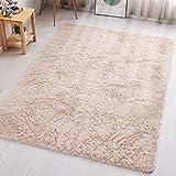 PAGISOFE Beige Fluffy Shag Area Rugs for Bedroom