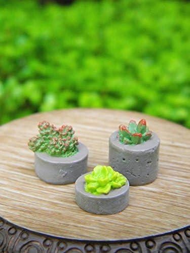 Miniature Dollhouse FAIRY GARDEN ~ Set of 3 TINY Succulent Plants ~ NEW