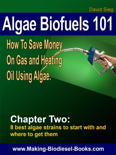 Algae Biofuels 101: Chapter 2-The 8 best Algae Strains to Start With and Where To Get Them