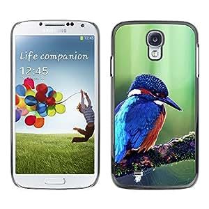 Be Good Phone Accessory // Dura Cáscara cubierta Protectora Caso Carcasa Funda de Protección para Samsung Galaxy S4 I9500 // Cute Majestic Blue Kingfisher Bird