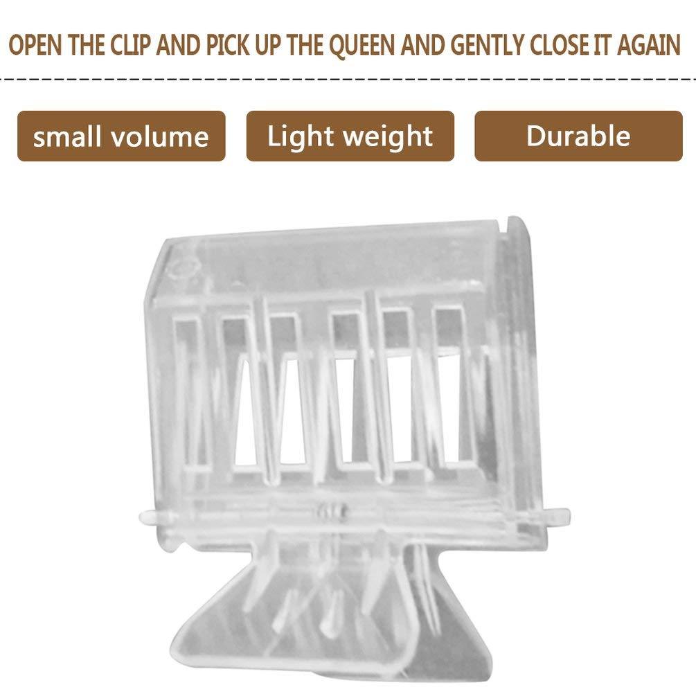Transparent Nihlsen Clip en Plastique Transparent Queen Cage Clip Bee Catcher Clip Clip dapiculture Bee Durable /équipement Outil pour lapiculteur