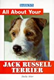 All about Your Jack Russell Terrier, Sheila Atter, 0764111906