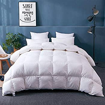 Image of APSMILE Fusion Hungarian Goose Down Comforter Lightweight for Summer Warmer Weather/Sleeper, Ultra-Soft Pima Cotton, 29oz 750FP Thin Duvet Inserts (Full/Queen, White) Home and Kitchen