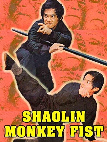 Shaolin Monkey Fist (Paracord Monkeys Fist Keychain Self Defense Weapon)