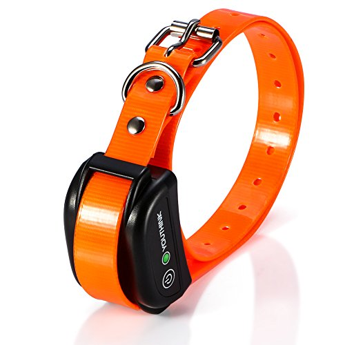 Waterproof & Rechargeable Static Shock Collar for Large Medium Small Stubborn & Energetic Dogs