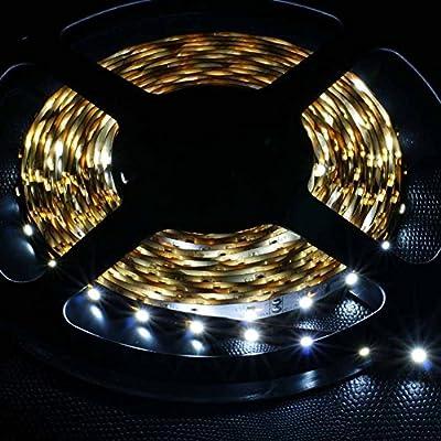 FAVOLCANO® 16.4FT 5M SMD 3528 Waterproof/Non Waterproof 300LEDs Red Green Blue Pink Yellow Cool White Warm White LED Flash Strip Light ,LED Flexible Ribbon Lighting Strip,LED Tape,DC12V