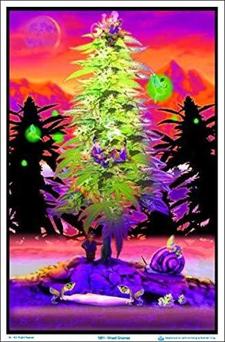 "23.5/"" x 35.5/"" Weed Gnomes Laminated Blacklight Poster"