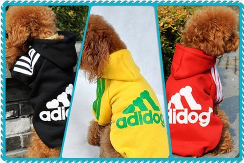 Dog Coat Pet Clothes Hoody Vest Autumn and Winter Coat Fashion and Leisure Sport Clothes with Adidog (yellow, XXL)