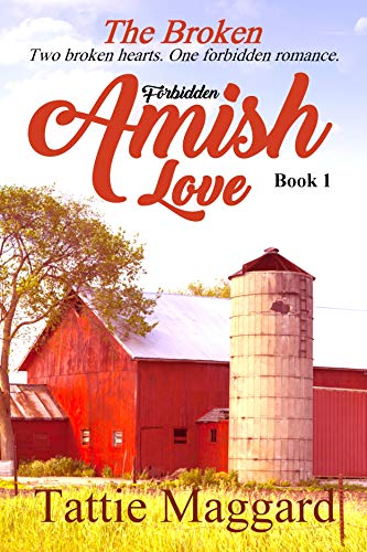 The Broken (Forbidden Amish Love Book 1)