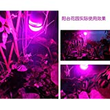 TRUST27W E26 A19 LED Plant Grow Light Bulb Red Blue White Lights for Garden Greenhouse, Hydroponic, Indoor Cultivation (Screw E26, Full Spectrum)