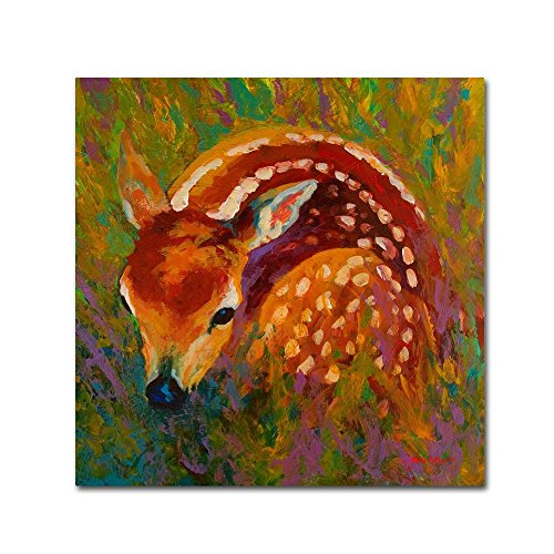 New Fawn by Marion Rose, 14x14-Inch Canvas Wall (Fawn Canvas)