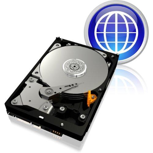 Western Digital 160GB SATA 3Gb/s Hard Drive 8MB 7200RPM 3.5IN Caviar Blue-20 Pack