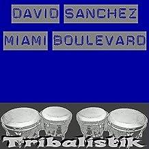 Miami Boulevard (Night)