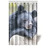 CTIGERS Animal Theme Shower Curtain for Kids Cool Black Bear Polyester Fabric Bathroom Decoration 48 x 72 Inch