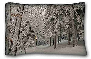 Soft Pillow Case Cover Nature Custom Cotton & Polyester Soft Rectangle Pillow Case Cover 20x30 inches (One Side) suitable for Queen-bed
