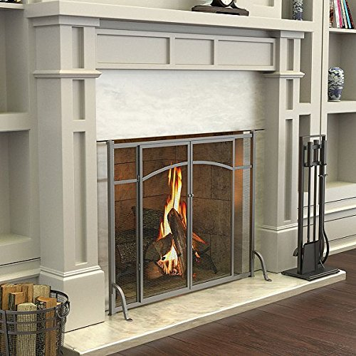 Hyde Park Flat Panel Fireplace Screen with Doors by Imrpovements